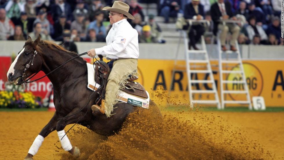 equestrian-disciplines